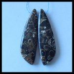 Natural Ammonite Foss il <b>fashion</b> woman Earring Bead,Charms Women Earrings <b>Jewelry</b> Gift Gem Customized,52x15x6mm,13.5g