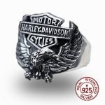 S925 sterling <b>silver</b> men's ring personalized classic retro fashion hale eagle modeling send love <b>jewelry</b> gift 18 years hot